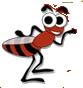 South East Florida Pest Control